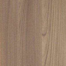 contour_fronts_elm-surfaced_olmo-biscotto