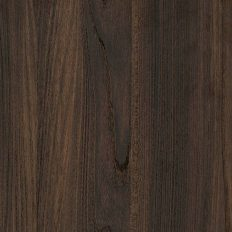 contour_fronts_elm-surfaced_olmo-scuro